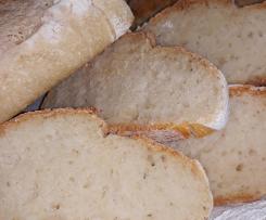 Pane veloce con lievito madre