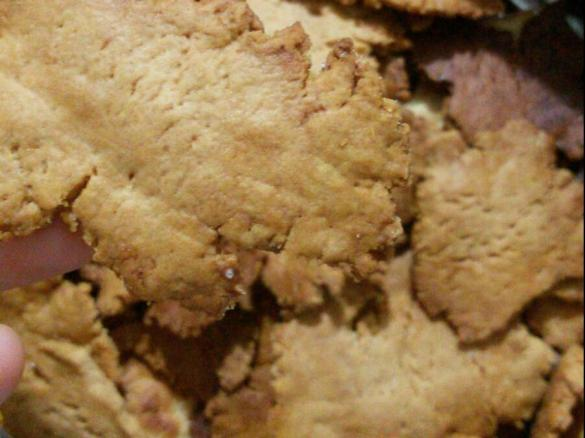 biscotti dietetici bimby tm31