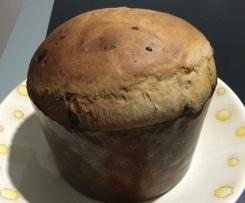 Panettone (ricetta facile e veloce)