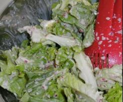 Condimento ai ravanelli (insalata primavera)